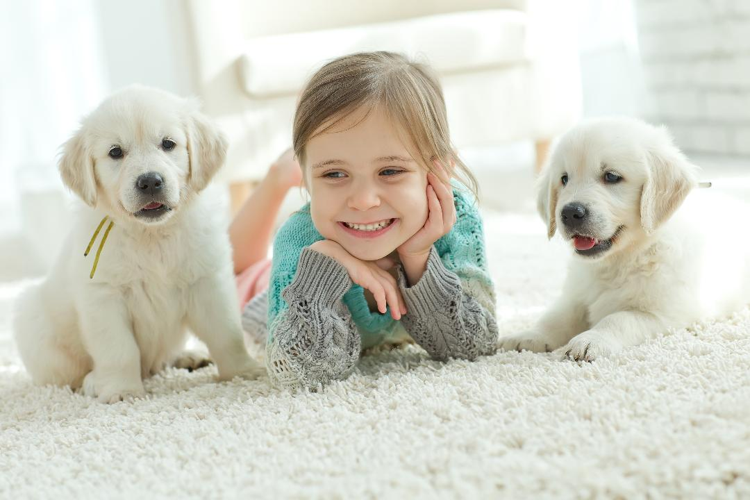 Little Girl with puppies