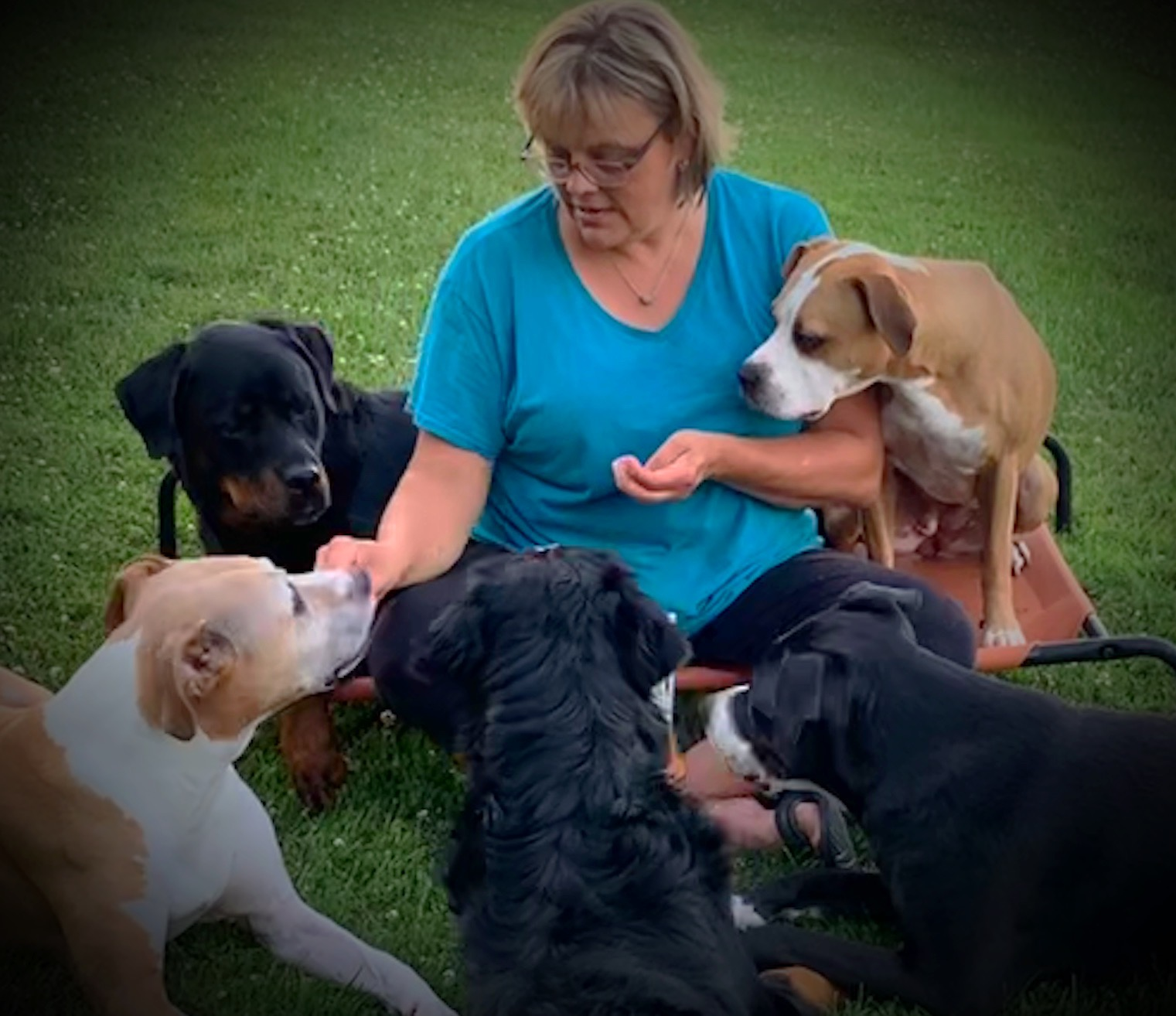 Kristi and dogs